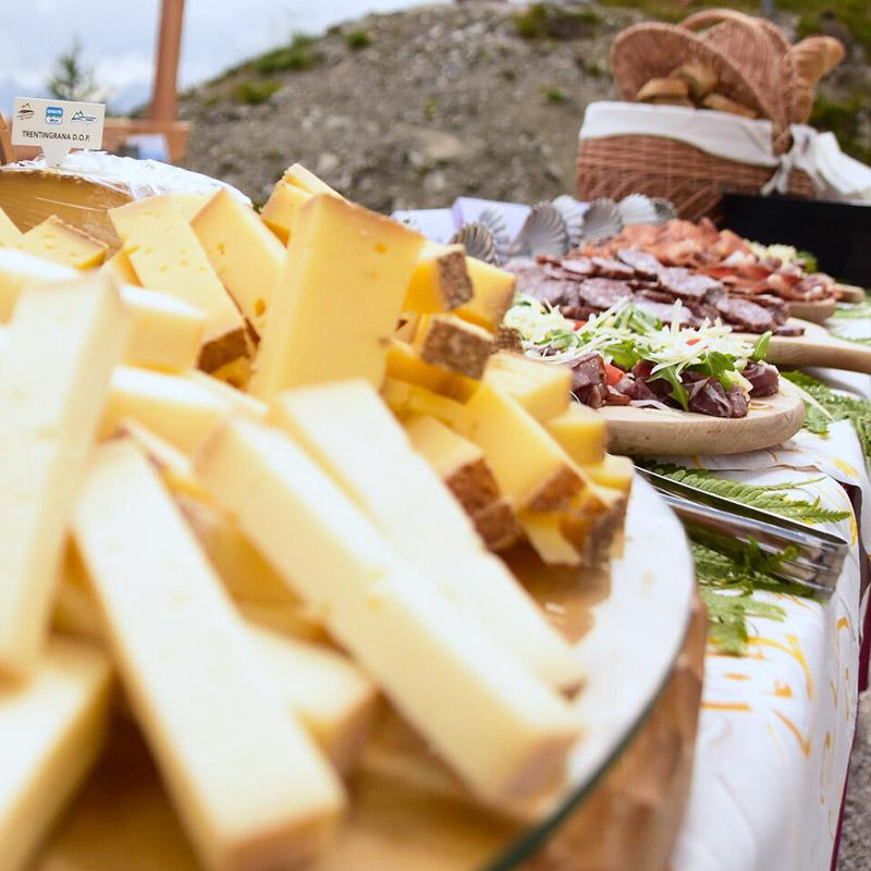 Relax-Cheesenic-Alpe-Tognola-Dolomiti