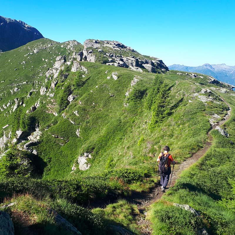 Trekking-percorso-panoramico-Alpe-Tognola-Dolomiti
