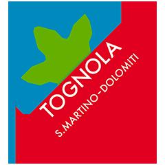 logo tognola-2021-240px