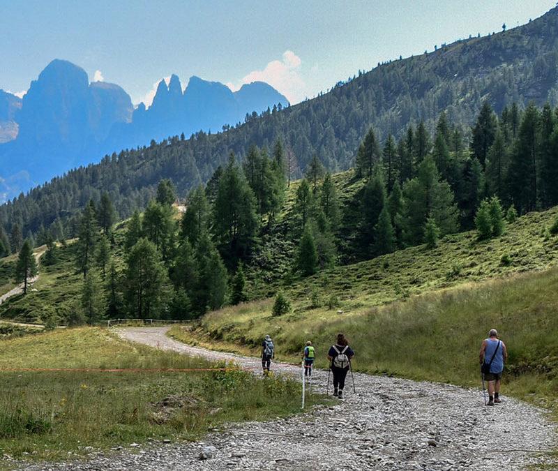 Passeggiata geologica lungo il Sentiero del Panzer